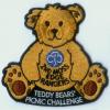 Teddy Bear's Picnic Challenge